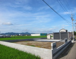 IMG_4099