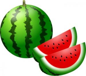 watermelon01-002